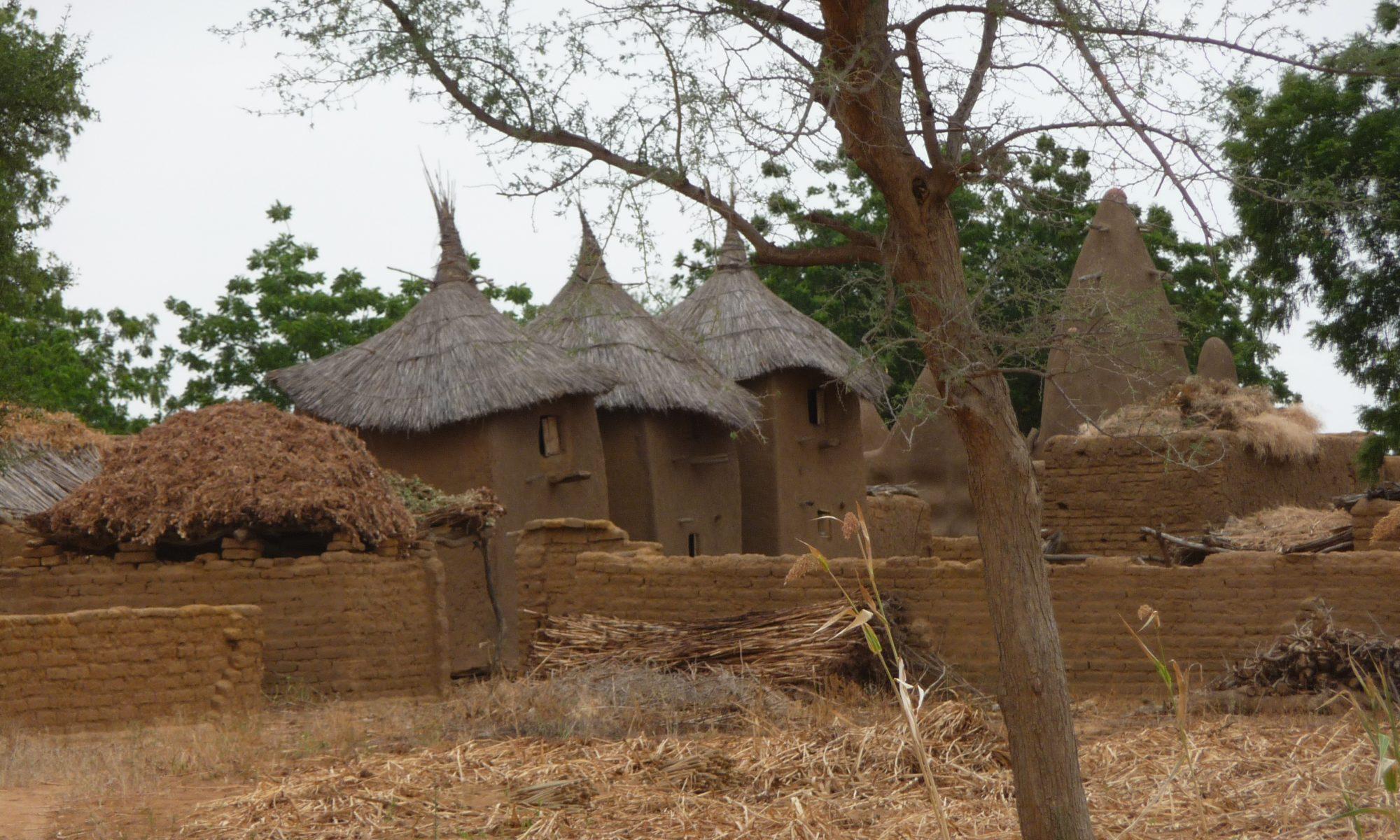 Mali-Médicaments